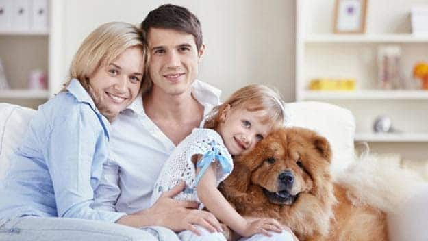 Wills & Trusts dog-young-family Direct Wills Kings Heath
